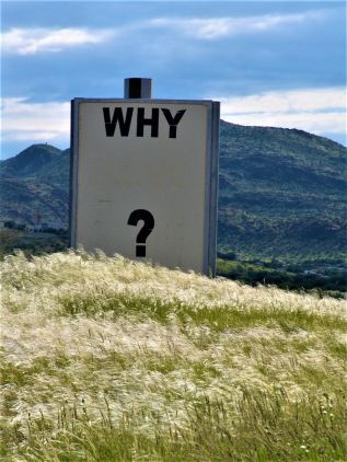 why sign.jpg